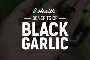 black garlic benefits
