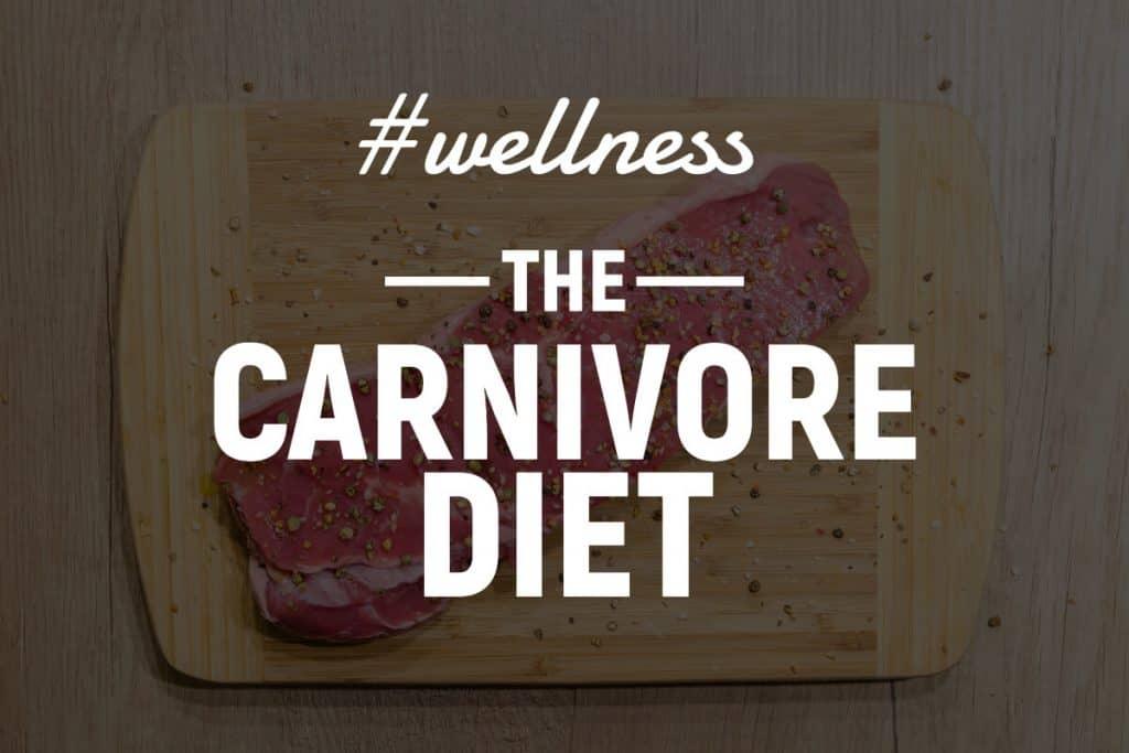 carnivore diet plan
