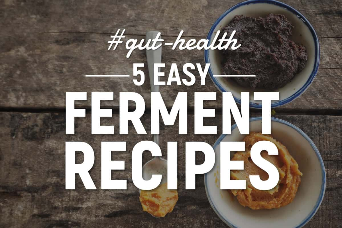 fermented food recipes